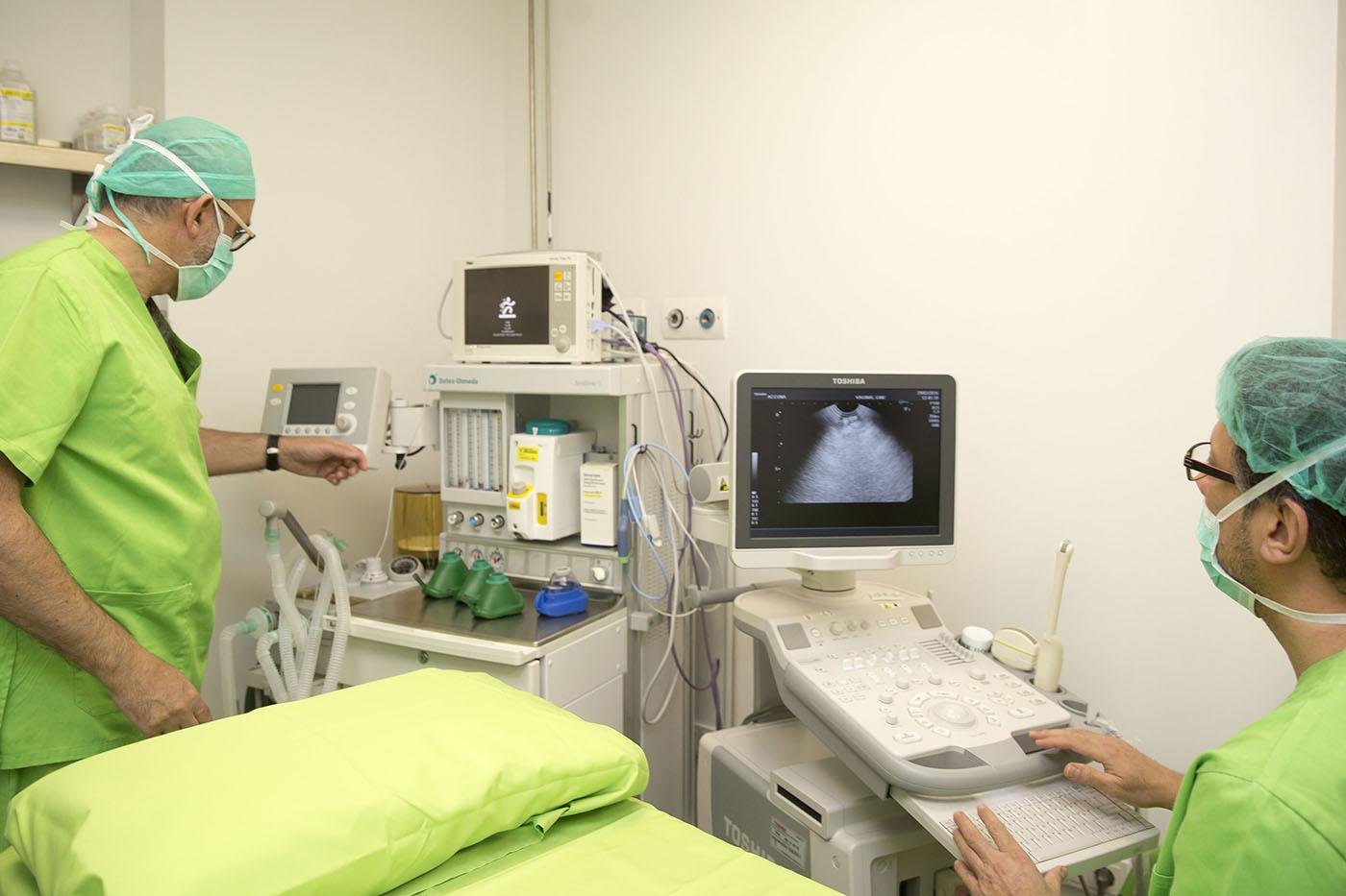 ICSI, técnica de reproducción asistida