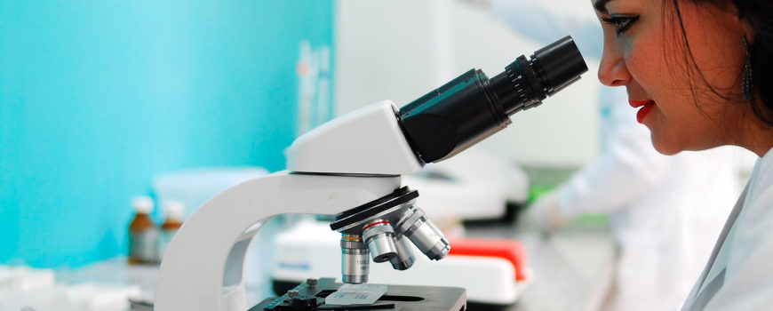Detrás del éxito hay un gran trabajo que comienza en el laboratorio